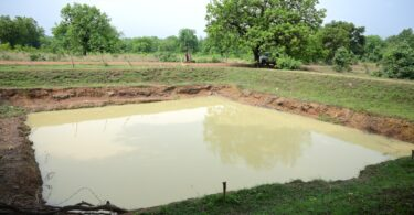 Farm Pond Sundargarh